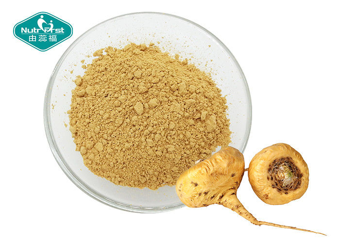 Dark Yellow Maca Root Supplement High Purity Water Soluble Extract From Medicinal Herb
